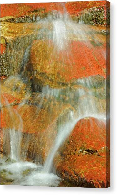 Canada, Alberta, Waterton Lakes Canvas Print by Jaynes Gallery