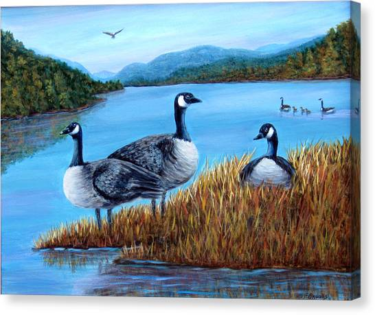Canada Geese - Lake Lure Canvas Print
