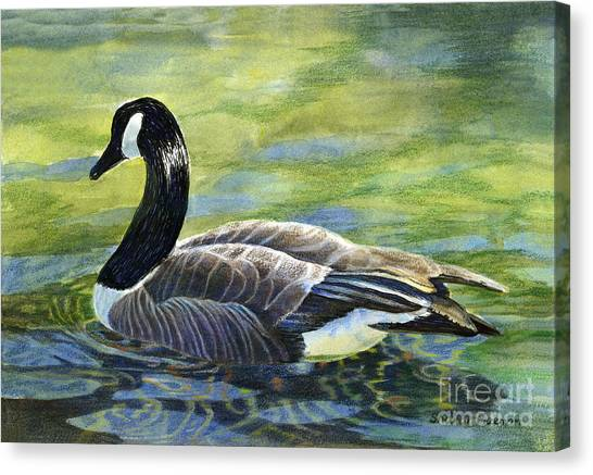 Geese Canvas Print - Canada Goose Reflections by Sharon Freeman