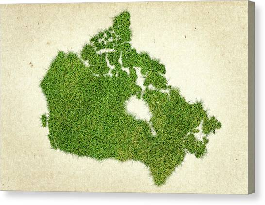 New Brunswick Canvas Print - Canada Grass Map by Aged Pixel