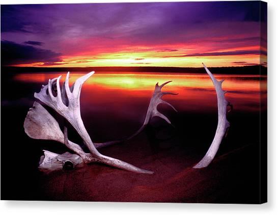 Northwest Territories Canvas Print - Canada, Northwest Territories by Jaynes Gallery