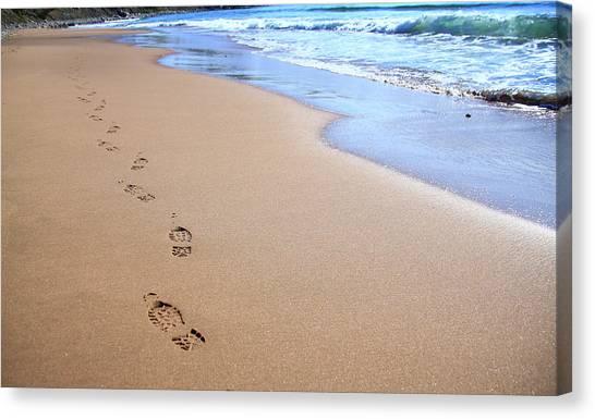 Cabot Trail Canvas Print - Canada, Nova Scotia, Footprints by Patrick J. Wall