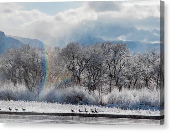 Rio Grande River Canvas Print - Canadian Geese, Rio Grande River, New by Zandria Muench Beraldo