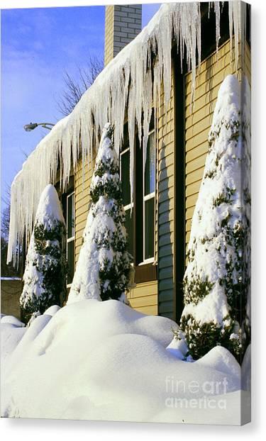Canadian Winter Canvas Print