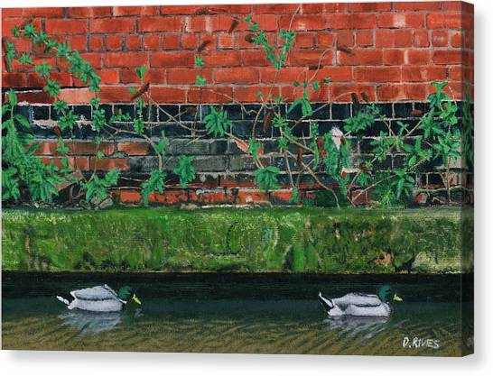 Canal Ducks Canvas Print