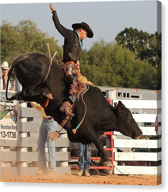 Rodeos Canvas Print - #canon #cowboy #action #actionshot by Lisa Yow