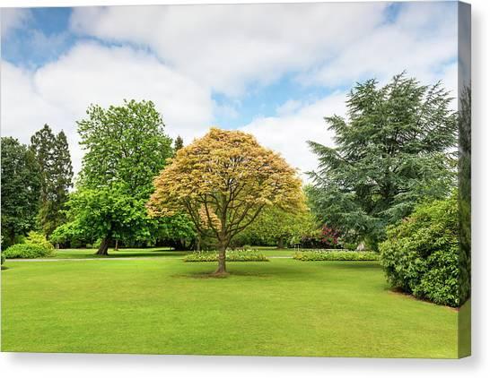Canon Hill Park, Birmingham, England, Uk Canvas Print by Chris Hepburn