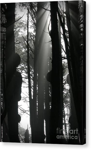Can't See...the Forest For The Trees Canvas Print