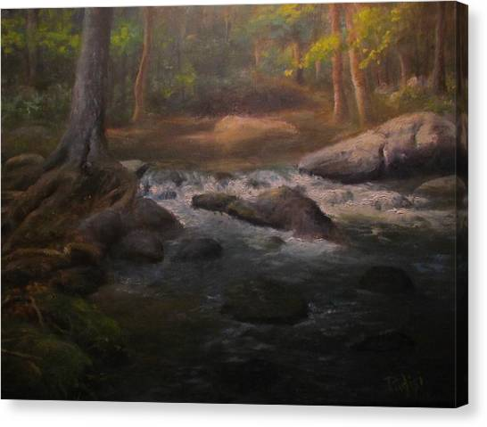 Can't Step Into The Same River Twice Canvas Print