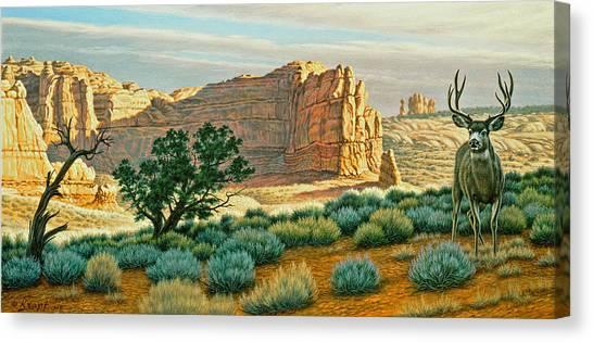 Mule Deer Canvas Print - Canyon Country Buck by Paul Krapf