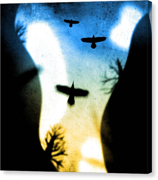Canyon Flight Canvas Print