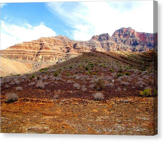 Grand Canyon Canvas Print - Canyon Floor by Ray Dugan