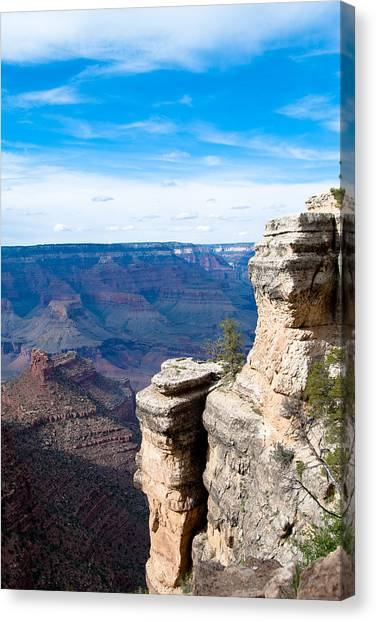 Canyon For Miles Canvas Print by Nickaleen Neff