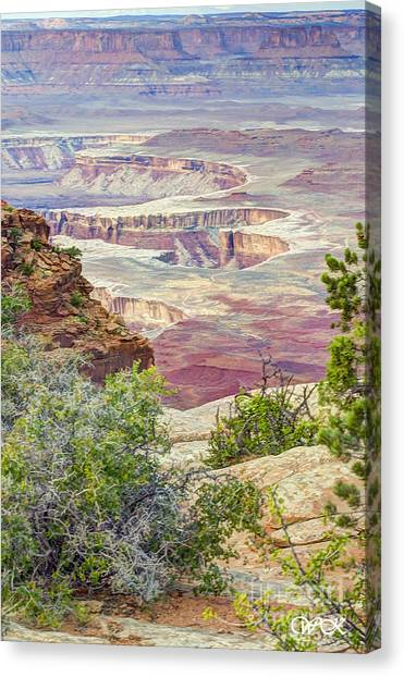 Canyon Lands Canvas Print