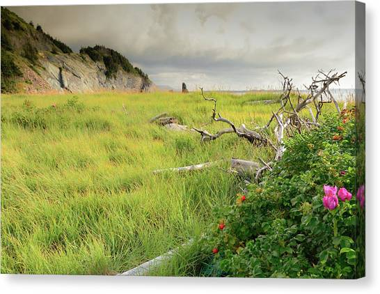 Cabot Trail Canvas Print - Cape Bretons Summer Beauty by Mel Sweetnam