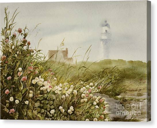 Cape Clover Canvas Print