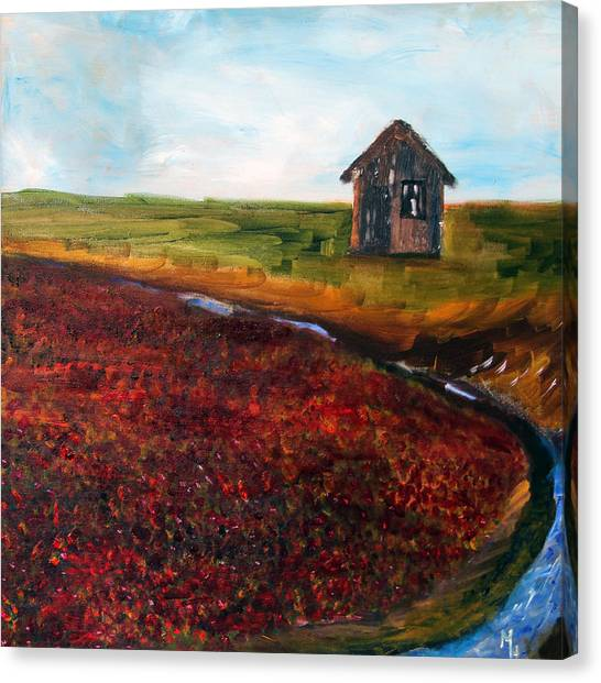 Cape Cod Cranberry Bog Canvas Print