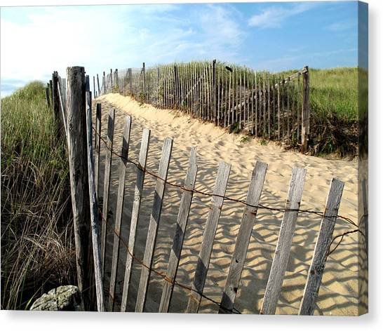 Cape Cod Dune Fencing Canvas Print