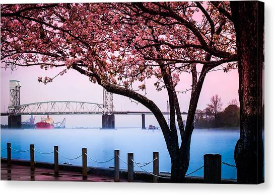 Cape Fear Of Wilmington Canvas Print