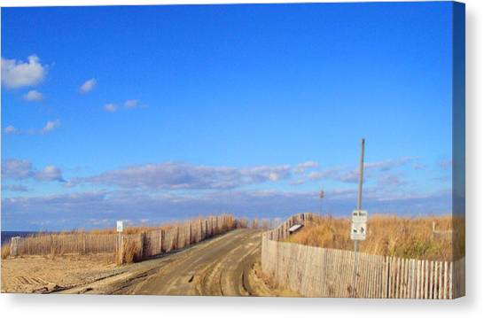 Cape Henlopen 13 Canvas Print by Cynthia Harvey