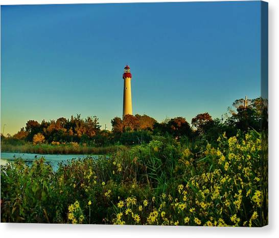 Cape May Lighthouse Above The Flowers Canvas Print