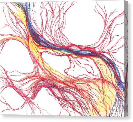 Capillaries Canvas Print by Lindsay Clark