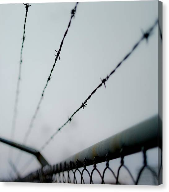 Chain Link Fence Canvas Print - Captive by Aaron Aldrich