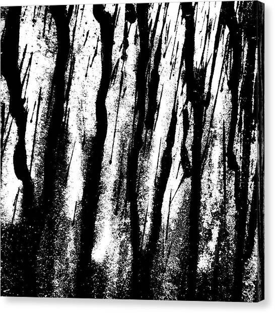 Rain Canvas Print - Car Door B by Jason Michael Roust