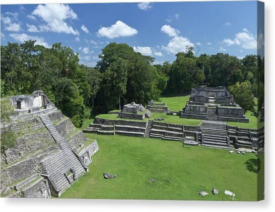 Belize Canvas Print - Caracol Ancient Mayan Site, Belize by William Sutton
