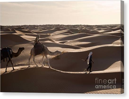 Arabian Desert Canvas Print - Caravan by Delphimages Photo Creations