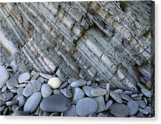 Beach Cliffs Canvas Print - Carboniferous Shale Layers by Jeremy Bishop/science Photo Library
