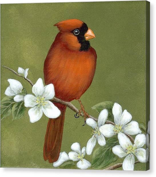 Cardinal And Dogwood Canvas Print