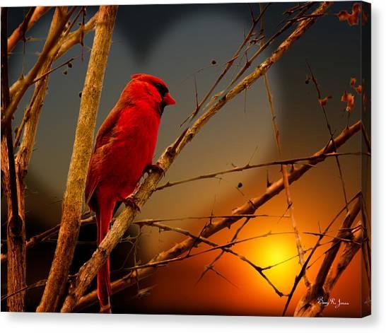 Cardinal At Sunset Valentine Canvas Print by Barry Jones