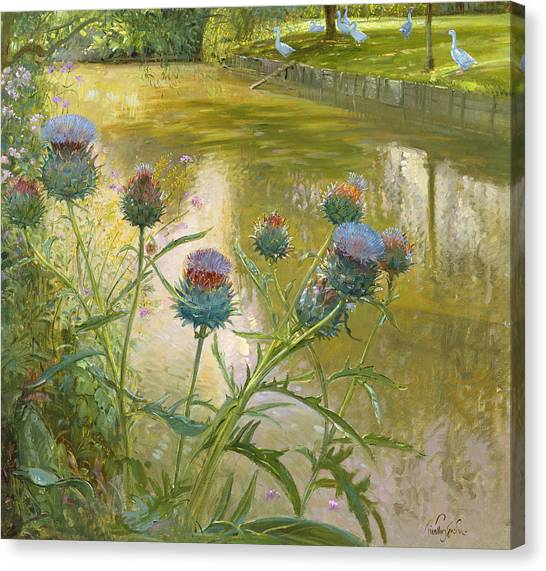 Murky Canvas Print - Cardoons Against The Moat  by Timothy Easton