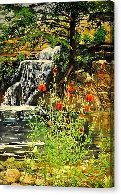 Carey Falls At Star Ranch Canvas Print