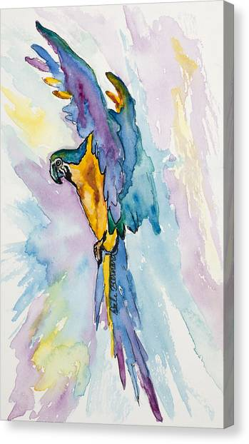 Caribbean Blue Macaw Canvas Print