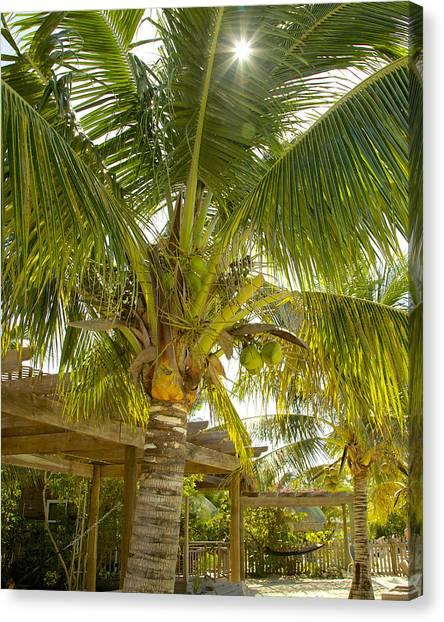 Caribbean Parasol Canvas Print