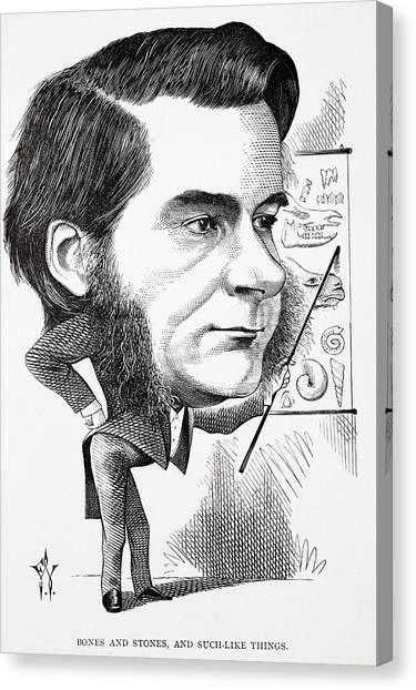 Atheism Canvas Print - Caricature Of Thomas Huxley by Paul D Stewart