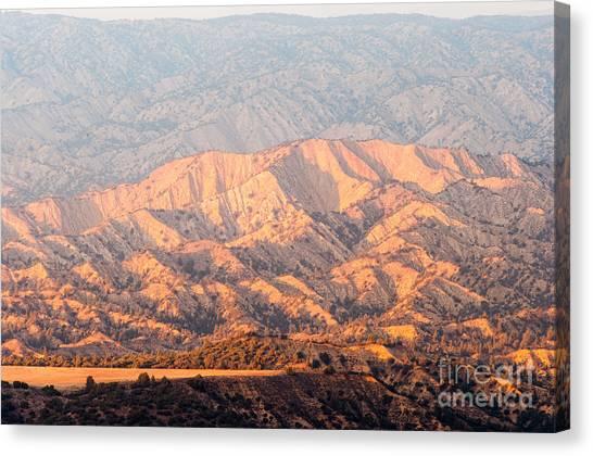 Carizzo Plains Nm  2-8574 Canvas Print by Stephen Parker