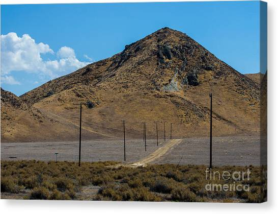 Carizzo Plains Nm  5-9653 Canvas Print by Stephen Parker