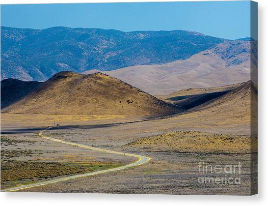 Carizzo Plains Nm  5-9655 Canvas Print by Stephen Parker