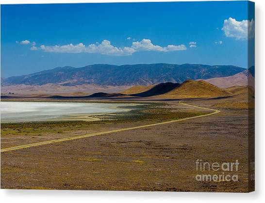 Carizzo Plains Nm  5-9656 Canvas Print by Stephen Parker