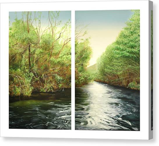 Canvas Print - Carmel River Mid-watershed by Logan Parsons