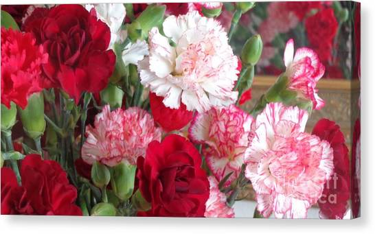 Carnation Cluster Canvas Print
