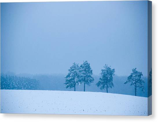 Carolina Snow Canvas Print