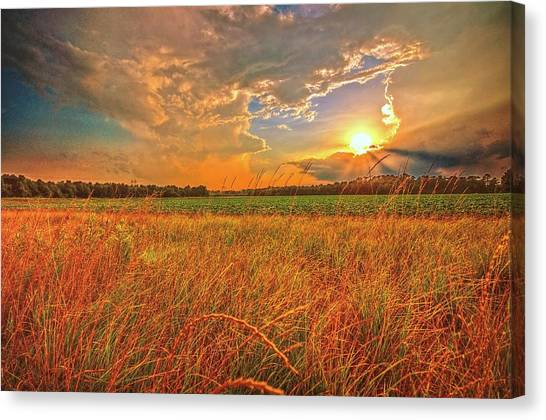 Carolina Summer  Canvas Print