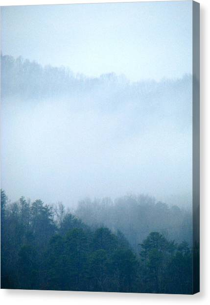 Carolina Winter Number Two Canvas Print