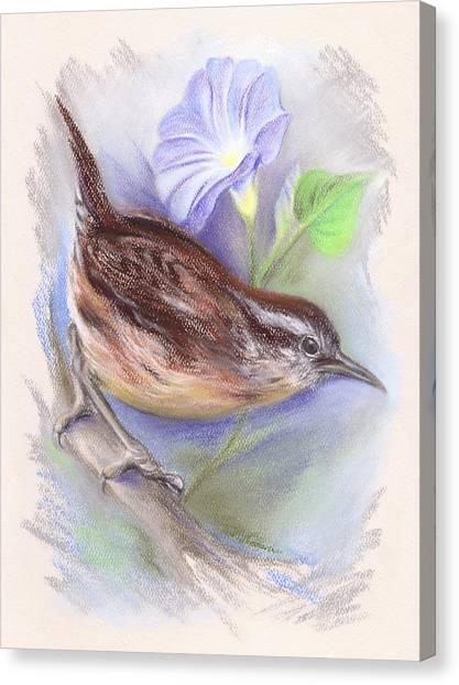 Carolina Wren With Morning Glory Canvas Print