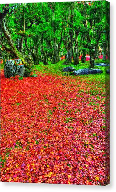 Fallen Tree Canvas Print - Carpet Of Love by Midori Chan