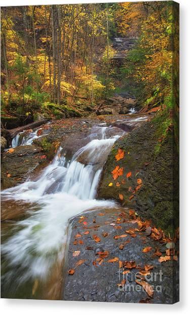 Cascade In The Glen Canvas Print